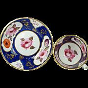 Antique Rare Mayer and Newbold Porcelain Cup And Saucer Circa 1825 Regency Era
