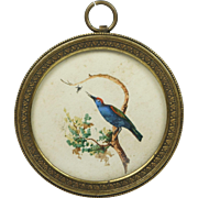 Antique 19th Century Miniature Watercolor Bird Pretty French Circular Frame