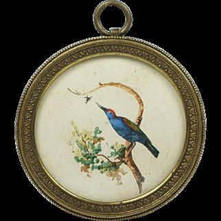Antique 19th Century Miniature Watercolor Bird Pretty French Circular Frame