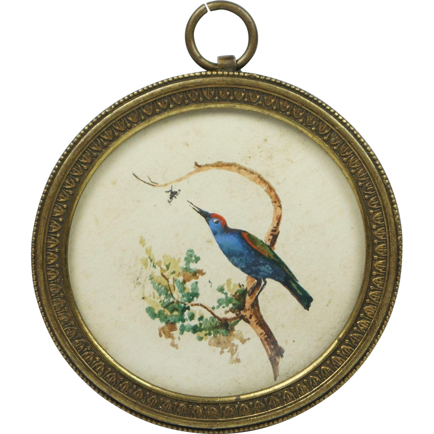 Antique 19th Century Miniature Watercolor Bee Eater Bird Pretty French Circular Frame 1830s