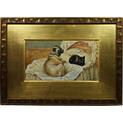 Antique Rare 19th Century Pair Dog Cat Watercolor Paintings Pug Boxer Signed Stephen T Dadd 1880