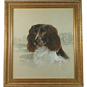 Reuben Ward Binks Dog Portrait Painting Springer Spaniel Watercolor Gouache Signed Dated 1922