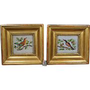 Antique Pair Miniature French Sable Beadwork Bird Pictures Georgian Circa 1830