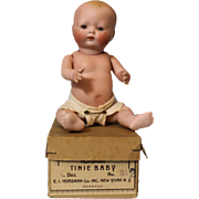 "7-1/2 inch All bisque Tynie Baby Doll orig box 6-1/2"" head Circ Blue sleep eye 1924"
