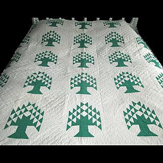"Vintage Patchwork ""Pine Tree"" Quilt"