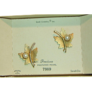 Sarah Coventry 1964 Precious Earrings in Original Box