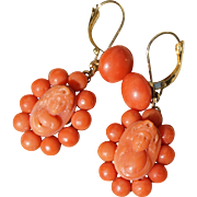 Antique Coral Cameo Earrings