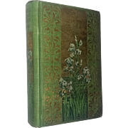 Antique Book Uncle Toms Cabin 1800's Illustrations GORGEOUS book Classic Literature Americana
