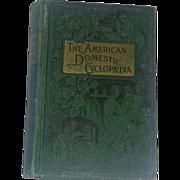 Antique Victorian Steampunk Book Women's History Domestic Arts 1800's Rare