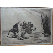 1930s Cocker Spaniel Signed Original Etching Diana Thorne