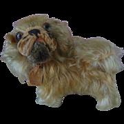 Vintage 1950s Steiff Pekingese Mohair Dog