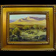 """Perry McNeeley   """"Sunlighted Desert Hills"""""""