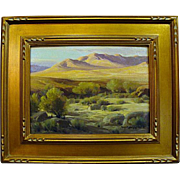 "Perry McNeeley   ""Sunlighted Desert Hills"""