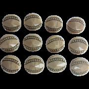 Set 12 Antique Victorian Buttons Ivory Glass Gold Shirt Dress Sewing