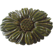 Carved Bakelite Brooch Vintage 1940s Olive Green Sunflower