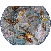 C. 1900's Majolica Plate w/Bird, Berries & Leaves-Pastel Colors