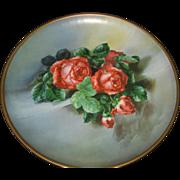 Antique Roses Malt Rainier Malt Tonic Tin Litho Advertising Plaque for the Seattle Brewing & Malting Co.
