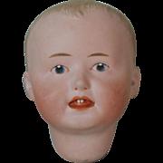 Darling Heubach Character 8373 Head
