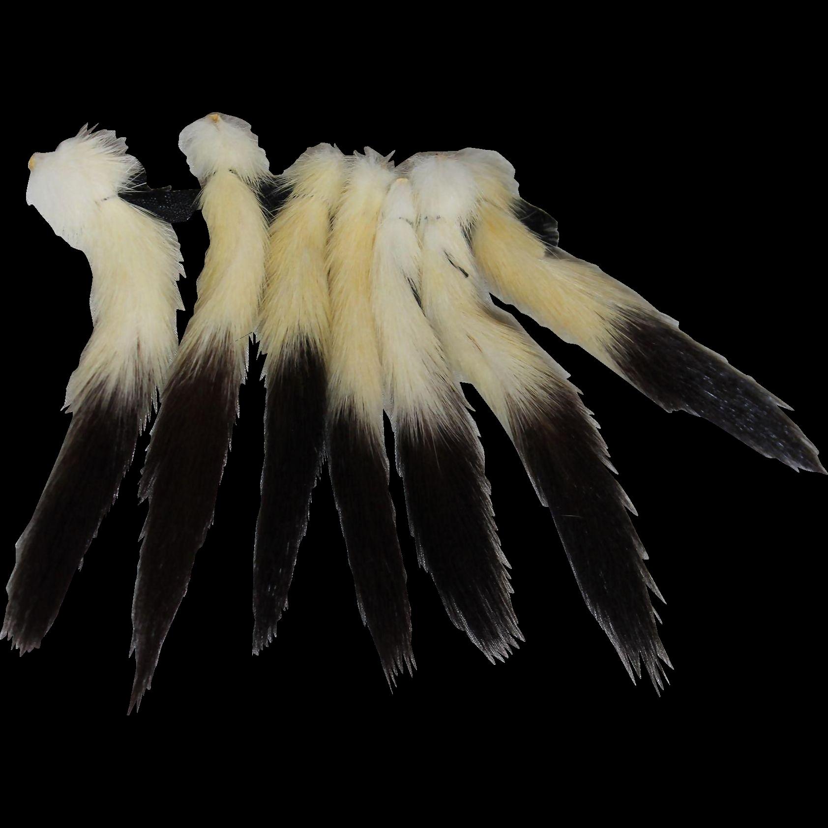 Miniature Antique Ermine Tails for Fashion