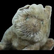 Darling Antique Steiff Kitten