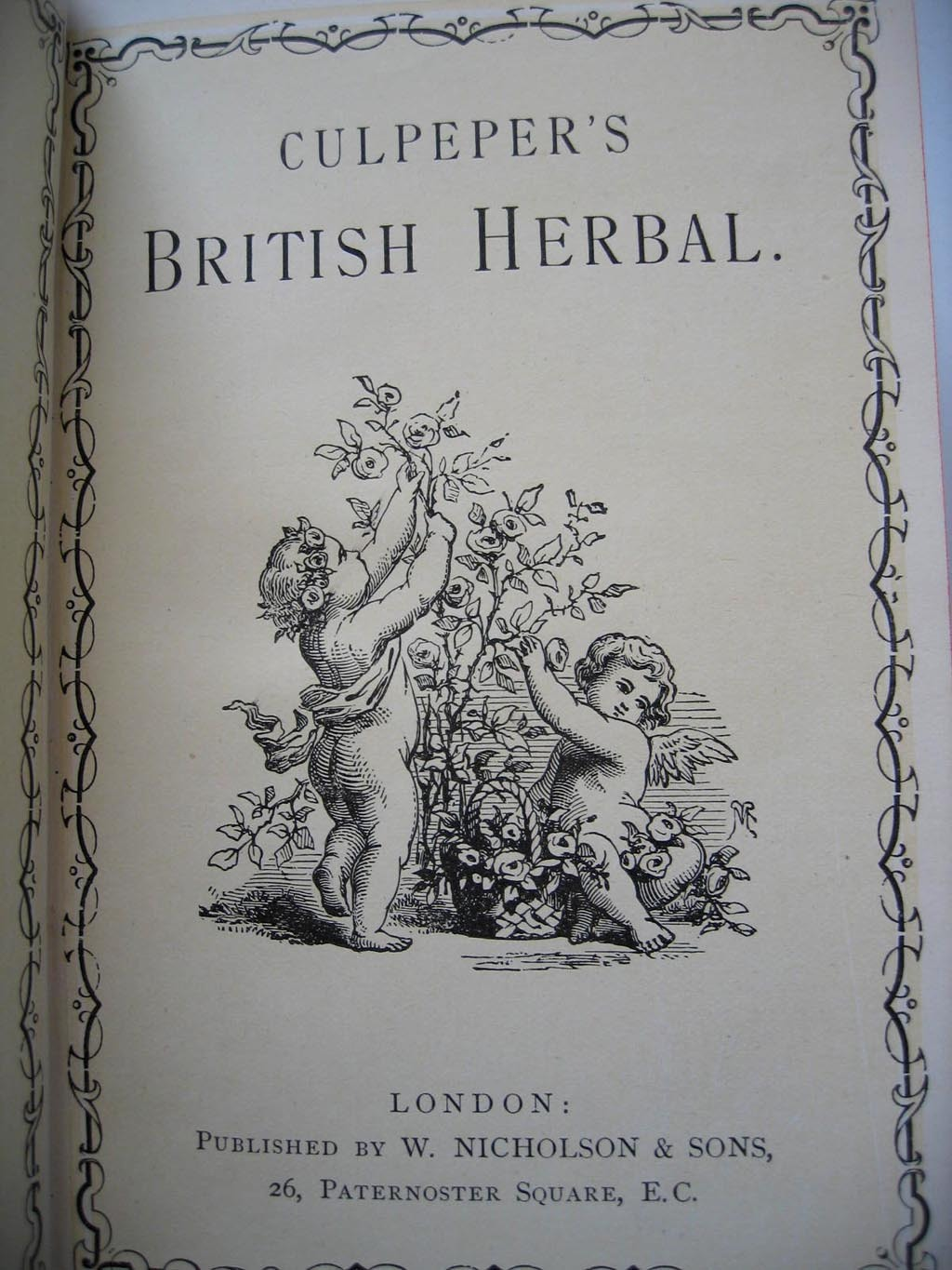 British herbal medicine association - Roll Over Large Image To Magnify Click Large Image To Zoom