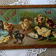 Baby Chick Yard Long Print Van Vredenburgh Chromolithograph Chicken Butterfly Antique