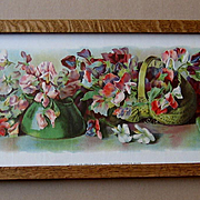Antique Sweet Peas Yard Long Print Allen Chromolithograph