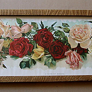 Cabbage Roses Yard Long Print N Wells Chromolithograph Rose Antique Victorian