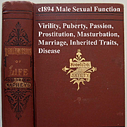 The Transmission of Life Male Sexual Function Book Virility Marrying Cousins Prostitution Abortion Inherited Traits Engagements Marriage