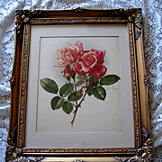 Paul de Longpre Pink Bridesmaid Roses Print Chromolithograph Antique