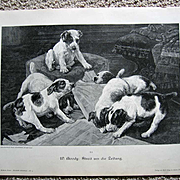 Antique Dog Puppy Print Victorian Engraving c1880 Dogs Puppies
