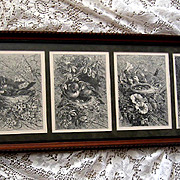 Giacomelli Bird Yard Long in Antique Frame