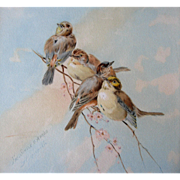 Watercolor Painting Birds by Giacomelli Gouache Original Frame Glass Back Intact Print