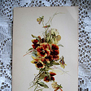 Antique Pansies Print Catherine Klein
