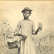 Negro Girl with Flowers Postcard c1900