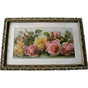 Antique Roses Print Paul de Longpre Just Too Sweet Half Yard Long All Original