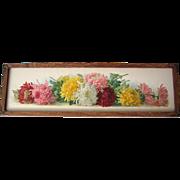 c1900 Yard Long Chrysanthemums Print Paul de Longpre Untrimmed Near Fine