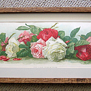 c1895 Rose Yard Long Print Paul de Longpre Study of Roses Antique Victorian