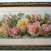 Antique Roses Print Paul de Longpre Just Too Sweet