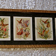 Six Paul de Longpre Butterfly Yard Long Print s Roses Lilac Clover Clematis Daisy Chromolithograph