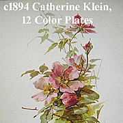 Catherine Klein The Year Book of American Authors Book Ida Scott Taylor Language Poetry of Flowers Flower Chromolithograph Print s Roses Pansies Violets Lilacs Daffodils Apple Blossoms