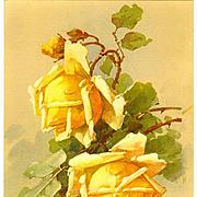 c1890's Antique Roses Print Catherine Klein