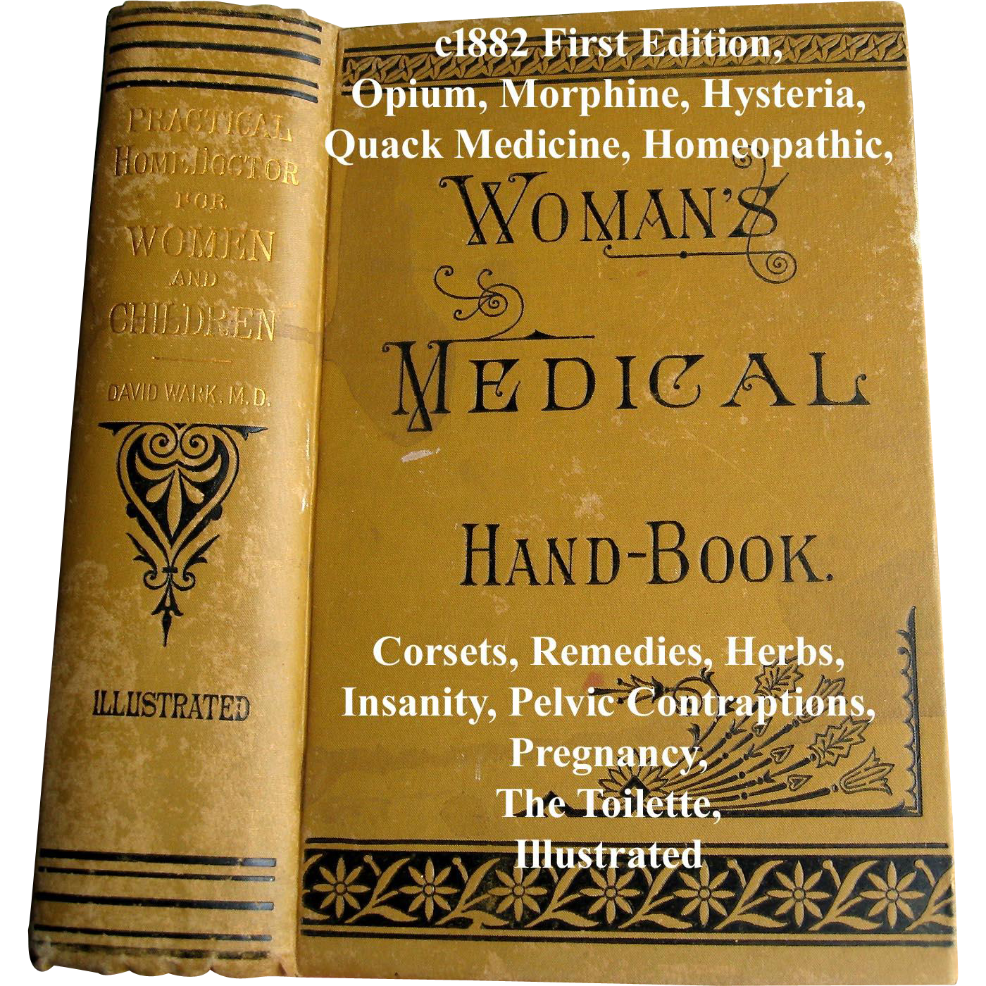 c1882 Womans Medical Hand Book The Practical Home Doctor Book First Edition Corsets Quack Medicine Opium Morphine Hysteria Pregnancy Toilet Pelvic Contraptions Remedies Herbs Homeopathic Drowning Accidents Nervous Cough Insanity