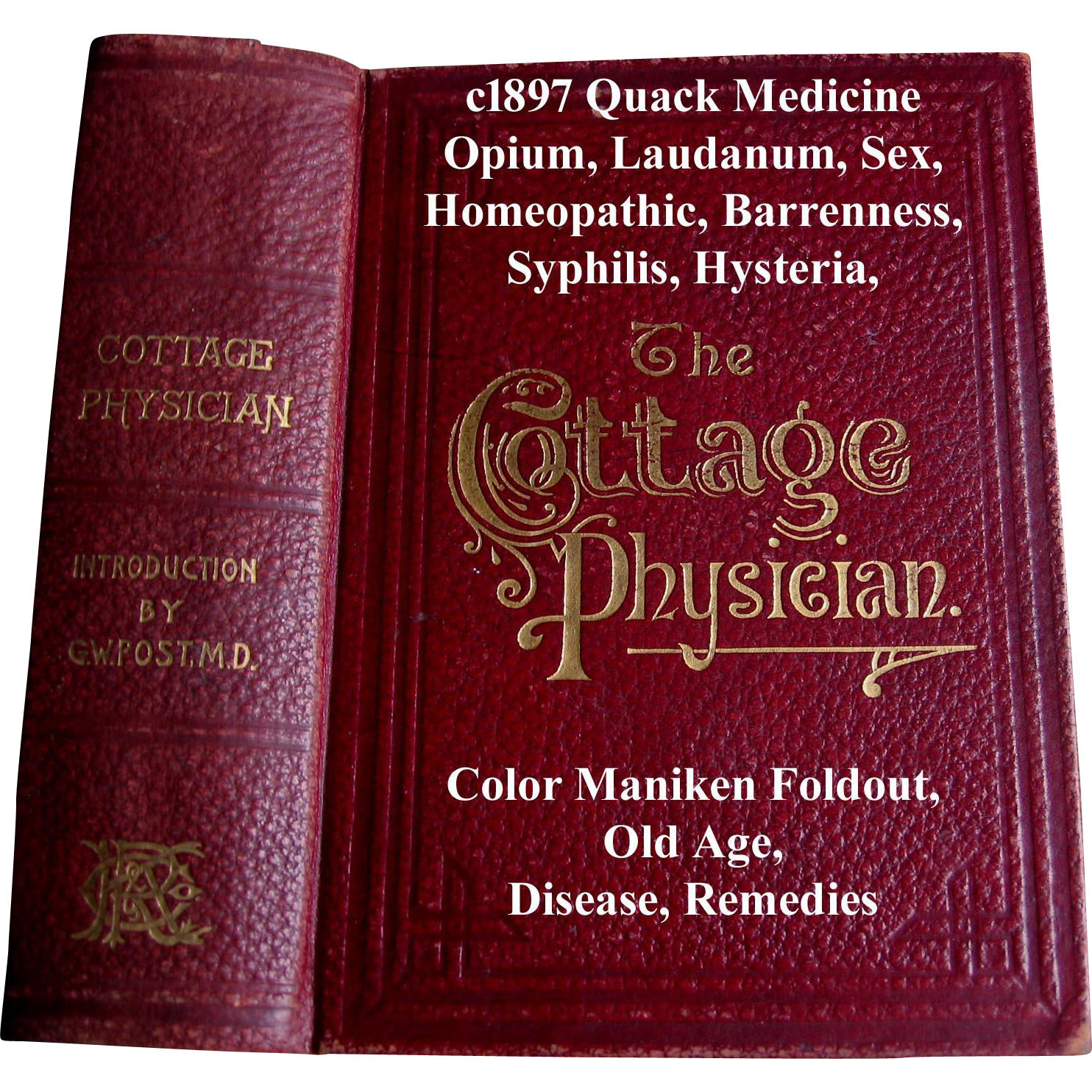 c1897 The Cottage Physician Quack Medicine Medical Opium Laudanum Homeopathic Sex Barrenness Masturbation Disease Remedies Syphilis Hysteria Scientific Phrenology Toilet Cosmetic Recipes Hydropathy Electrical Stimulation