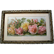 Antique Roses Print Paul de Longpre Just Too Sweet