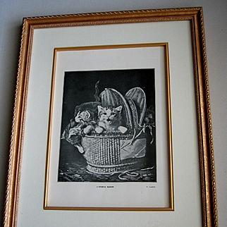 c1910 Cat Kitten Print Lambert Gold Frame