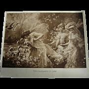 c1916 Hans Zatzka Fragrance of June Print Ladies Roses Butterflies Doves