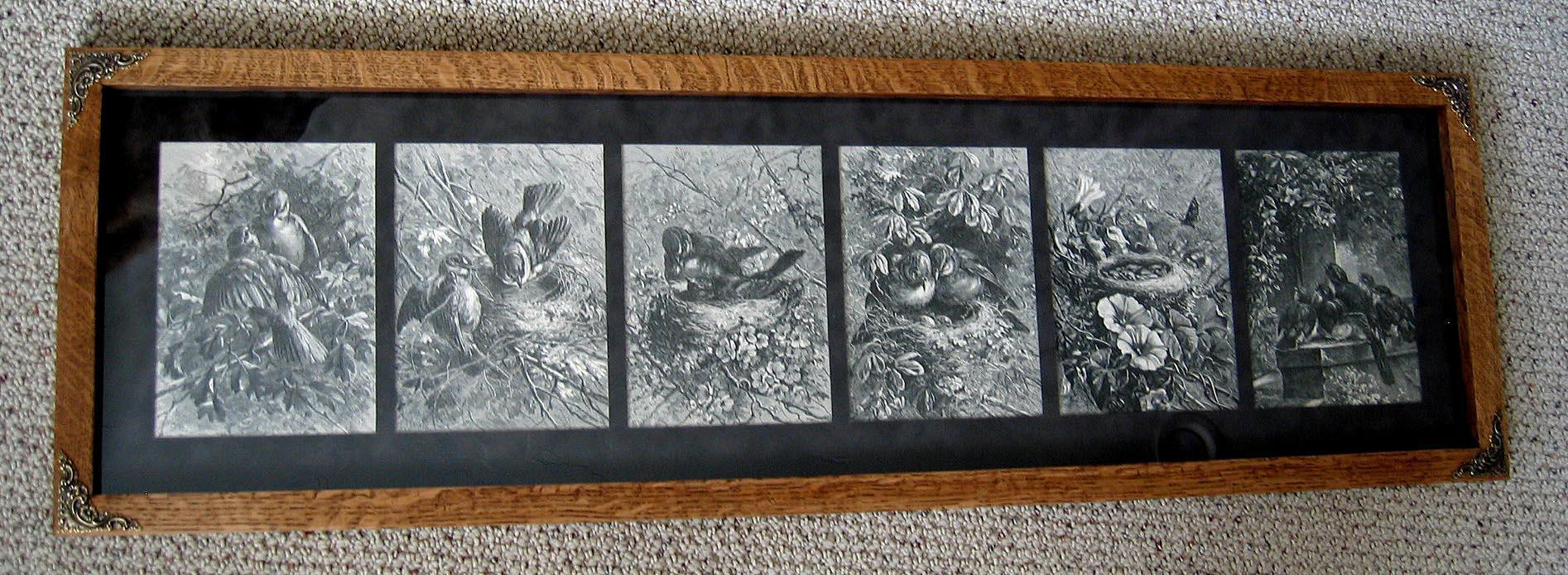 c1880 Bird Yard Long Print s Giacomelli Engraving Nest Eggs Chicks Antique