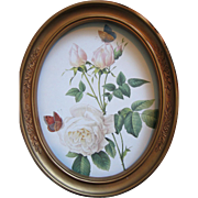 Redoute White Roses Print Butterfly Vintage Homco Frame
