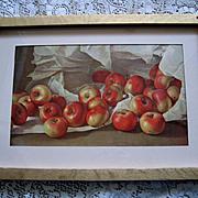 Apples Fruit Print Half Yard Long Antique